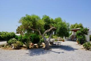 gallery zanneta studios garden